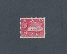 Aden Scott #51