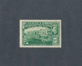 Jamaica Scott #77