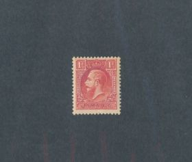 Jamaica Scott #103